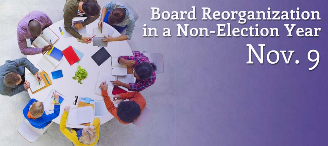 slider graphic - board reorg in nonelection year